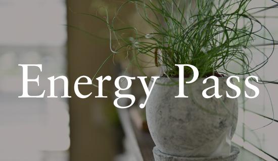 エネルギー・パスを解説
